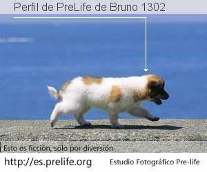Perfil de PreLife de Bruno 1302