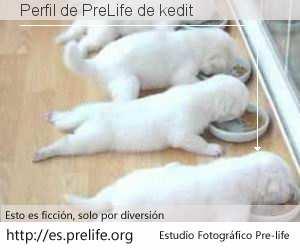 Perfil de PreLife de kedit