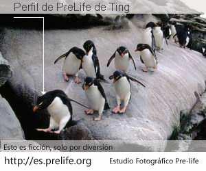 Perfil de PreLife de Ting