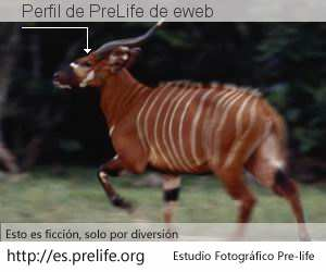 Perfil de PreLife de eweb