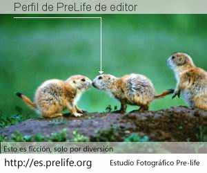 Perfil de PreLife de editor
