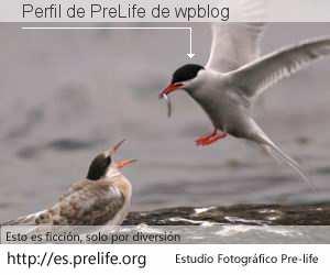 Perfil de PreLife de wpblog